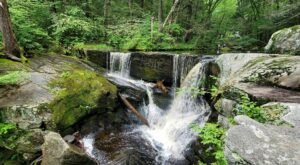 An Easy But Gorgeous Hike In Enders State Forest Leads To A Little-Known River In Connecticut