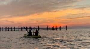 Take A Sunset Dolphin Kayak Tour For An Unforgettably Scenic Virginia Adventure