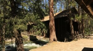 Walk Across A Covered Bridge And Step Back In Time At Pioneer Yosemite History Center In Northern California