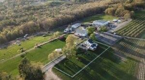 Hollis Hills Farm Is An Idyllic, Family Run Farm That Celebrates The Bounty And Beauty Of Massachusetts