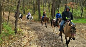 Visit Shimek State Forest By Horseback On This Unique Tour In Iowa