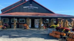 Get Ready For Apple And Pumpkin Everything At This Family-Friendly Orchard In Kentucky