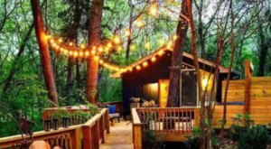 This Luxury Tree House In South Carolina Is A Magical Place For A Getaway