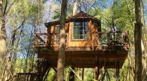 Sleep In The Treetops At Cherry Treesort, A Treehouse Resort In North Carolina