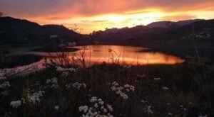 Discover A Pristine Paradise When You Visit Southern California's Dixon Lake
