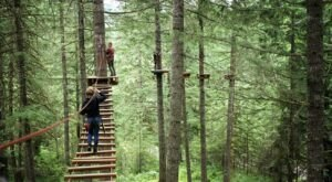 The Aerial Obstacle Course At Oregon's Tree to Tree Adventure Park Is Not For The Faint Of Heart