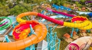Enjoy 30-Acres Of High-Flying Summer Fun At Adventure Island In Florida