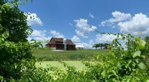 Enjoy Farm-To-Table Cuisine In A Converted Barn At Gibbet Hill Grill In Massachusetts
