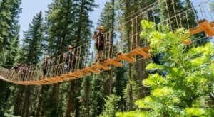 The Longest Elevated Canopy Walk In Colorado Can Be Found At Canopy Run Zipline Tour