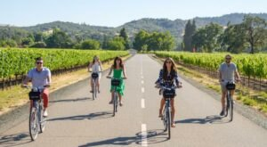 This Full-Day Bike Tour In Northern California Wine Country Takes You To Three Different Wineries