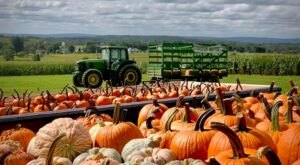 Nothing Says Fall Is Here More Than A Visit To Pennsylvania's Charming Family Fun Farm