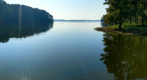 The Largest Man-Made Lake In Louisiana Is A Nature Lover's Paradise