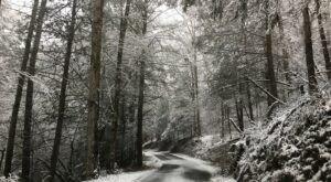 Prepare Yourself For Polar Temperature Swings This Winter In Georgia, According To The Farmers Almanac