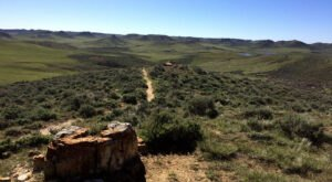 Fall Is The Perfect Time To Explore Wyoming's Dry Creek Petrified Tree Forest