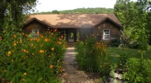 Nestled On A 200-Acre Bison Farm, This Is The Most Unique Airbnb In Arkansas
