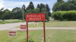 Sprague's Family Fun Farm In Michigan Is The Perfect Place To Embrace Life's Simple Pleasures