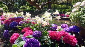 This Blooming Botanical Garden Was Recently Named The Most Beautiful Place In Alabama