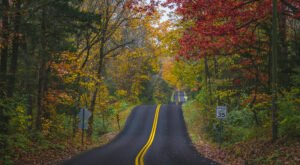 When And Where To Expect Missouri's Fall Foliage To Peak This Year
