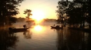 Discover A Pristine Paradise When You Visit Louisiana's Lake Chicot