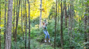 Try Zip Lining, An Obstacle Course, And More All At This One Park Near New Orleans