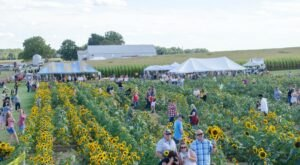 Don't Miss Out On Sunflower Days At Ramseyer Farms, One Of The Happiest Flower Festivals In All Of Ohio