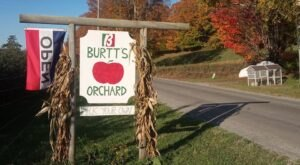 Stock Up On All Your Fall Favorites At This Vermont Apple Orchard