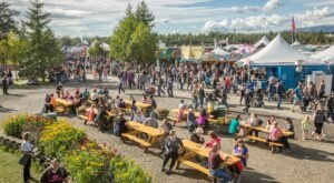 Don't Miss The Biggest Festival In Alaska This Year, The Alaska State Fair
