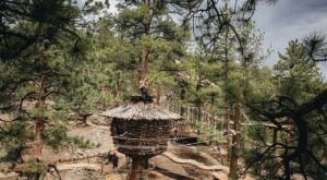 This Treehouse Adventure Park May Be One Of The Most Magical Places In Colorado
