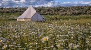 Escape To A Private Tent In A Serene Meadow At This Gorgeous Airbnb Stay In Idaho