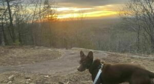 Mount Agamenticus Is A Unique Dog-Friendly Destination In Maine Perfect For An Outdoor Adventure