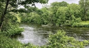 A Peaceful Canoe Trip Along The Blackstone River Is Just What You Need to Tap Into Your Inner Zen