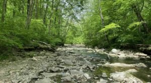 The Wolf Cave Trail Loop In Indiana Takes You From Sinkholes To Caves And Back