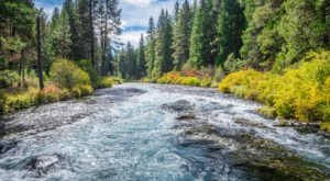 The West Metolius River Trail Just Might Be One Of The Most Beautiful Hikes In Oregon
