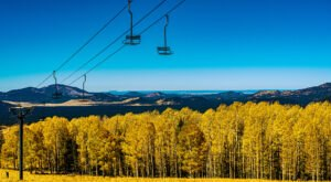 When And Where To Expect Arizona's Fall Foliage To Peak This Year