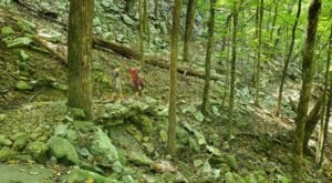 McKay Hollow Trail Was Recently Named One Of Alabama's Best Hiking Trails