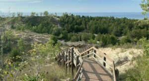 The Dune Succession Trail In Indiana That Leads To Incredibly Scenic Views