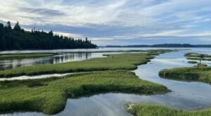 Nisqually Estuary Trail Is A Boardwalk Hike In Washington That Leads To Twin Barns