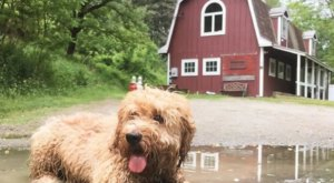 Experience This Small Vermont Town By Staying In Your Very Own Barn