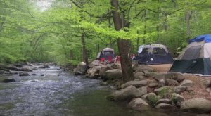 Virginia's Best-Kept Camping Secret Is This Riverfront Spot With Just 30 Glorious Campsites