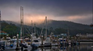 You Can Walk, Dine, And Play At Pillar Point Harbor Along The Northern California Coast