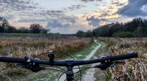 This Thrilling Florida Park Is A Paradise For Mountain Bikers & Nature Lovers