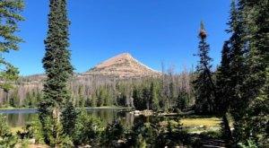 Camp At 10,000 Feet With Endless Views At This Utah Campground
