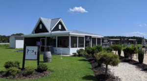 Dog & Oyster Vineyard Is A Pet-Friendly Winery With Some Of The Best Wine, Oysters, And Views In Virginia