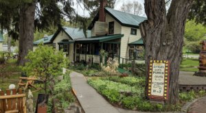 Alden's Mill House Is The Coziest Little Shop In The Whole State Of Michigan