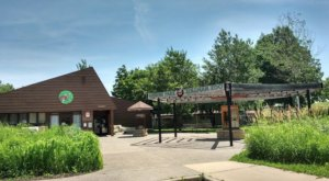 Hike, Camp, And See Native Animals With A Trip To Oxbow Park And Zollman Zoo In Rochester, Minnesota