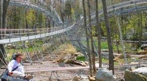 Take A Ride Through North Carolina On The Epic Wilderness Run Alpine Coaster