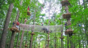 You'll Want To Ride The One Of A Kind Zip Lines Found At The Adventure Park In Connecticut