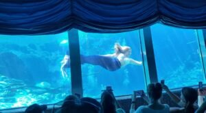 The City Of Live Mermaids Is Hiding In Small Town Florida And It's As Weirdly Wonderful As You'd Expect