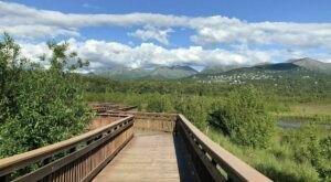 7 Easy Boardwalk Hikes In Alaska That Offer Stunning Views