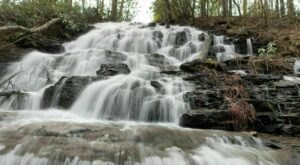 This 1.5-Mile Trail In Georgia Leads To Blossoming Wildflowers And A Cascading Waterfall